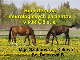 Hippoterapia neurologických pacientov v PJK Číž a.s.