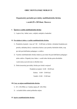 Prevádzka ihriska - Základná škola s materskou školou Hontianske
