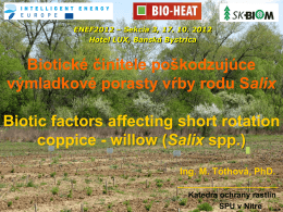 Vhodnosť pestovania rýchlo-rastúcich kultivarov vŕb (Salix viminalis