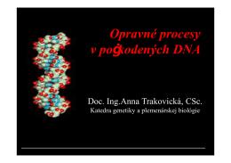 Typy poškodení DNA - Katedra genetiky a plemenárskej biológie
