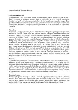Pogona vitticeps.pdf