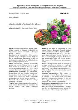 Vyšľachtené odrody - Výskumný ústav ovocných a okrasných drevín