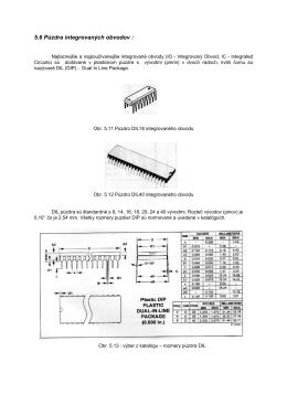 Puzdra_IO.pdf