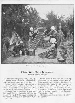 MALY_CTENAR_29.rocnik_(1909