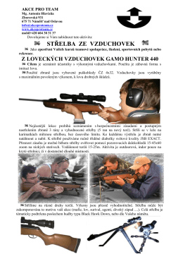 Střelba ze vzduchovek v PDF