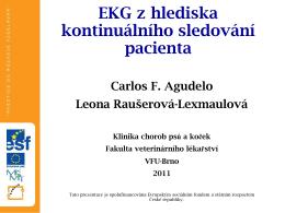 EKG z hlediska kontinuálního sledování pacienta