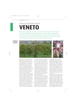 70-1 G_Veneto
