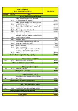 Paragraf Položka Název 1111 Daň z příjmů
