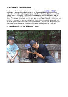 Kompost 12/2015 - Zatoulánek ve své nové rodině