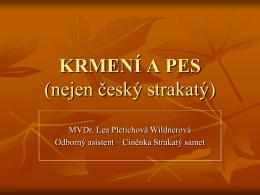 Prezentace od Lea Pletichová – Wildnerová