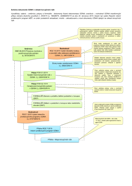 Schéma dokumentů CENIA v oblasti korupčních rizik Vysvětlivky