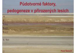 PDF: 6,5 MB - pralesy.cz