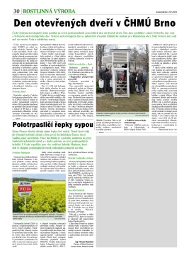 Polotrpasličí řepky sypou, Zemědělec 20/2015 (PDF 202 KB)