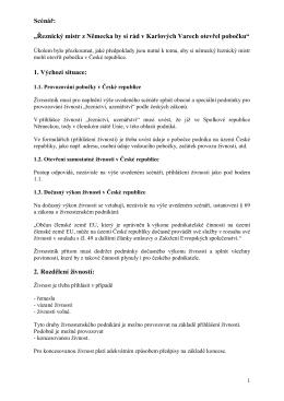 810A-021205-Darstellung Szenarium Fleischermeister