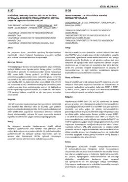 S-37 S-38 - JournalAgent