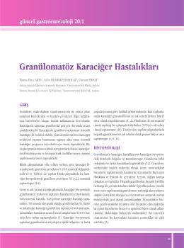 Granülomatöz Karaciğer Hastalıkları