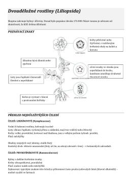 Dvouděložné rostliny (Liliopsida)