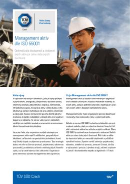 Management aktiv dle ISO 55001