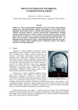 Digitální zpracování obrazu z termovizní kamery