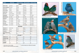 / 162 / / 163 / Astrildovití ptáci – chovatelská encyklopedie