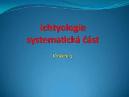 pdf 4,1 MB