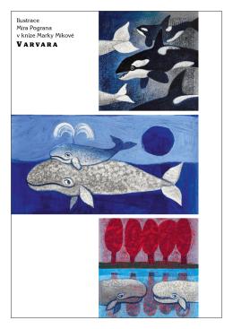 Ilustrace Mira Pograna v knize Marky Míkové V A RVA R A