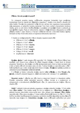 Příloha: Slovník použitých pojmů Ve výstupech projektu
