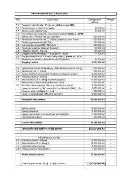 Program investic