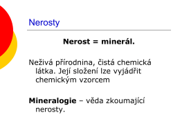 Nerosty
