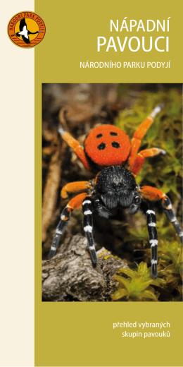 pavouci - Správa národního parku Podyjí