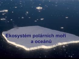 Ekosystém polárních moří a oceánů