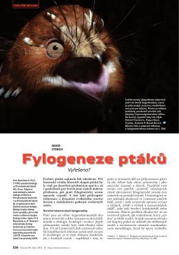 Fylogeneze ptáků - Centrum pro teoretická studia
