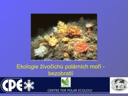 Fauna centrální části Svalbardu: paraziti mořských živočichů.