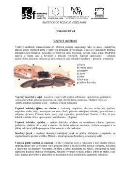 Pracovní list 24 Vepřové vnitřnosti