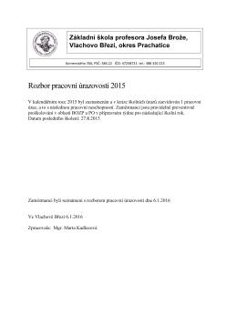 Rozbor pracovní úrazovosti 2015