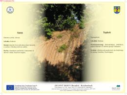 Tephrit Tefrit ZELENÝ MOST Okrouhlá