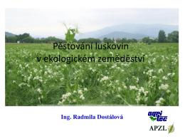 Význam pěstování sóji v osevním postupu