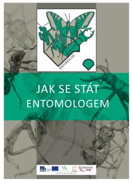 Entomolog - Vlastivědné muzeum a galerie v České Lípě