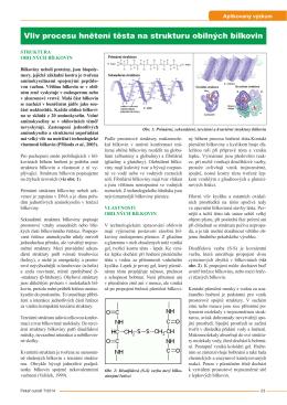 Vliv procesu hnětení těsta na strukturu obilných bílkovin