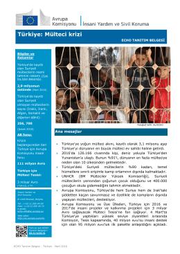 Türkiye: Mülteci krizi