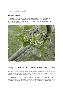 Zelena prognoza 24032016