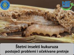 Štetni insekti kukuruza – postojeći problemi i očekivane pretnje
