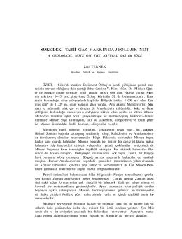 SÖKE`DEKÎ TABÎÎ GAZ HAKKİNDA JEOLOJİK NOT