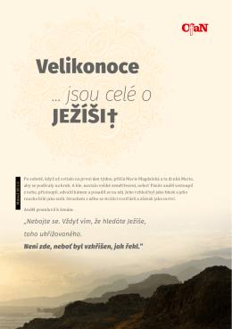 Stáhněte si pdf
