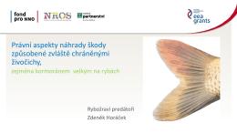 Rybožraví predátoři__Horáček Zdeněk
