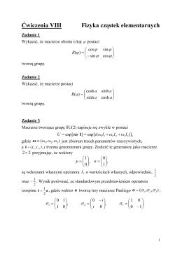 Ćwiczenia VIII Fizyka cząstek elementarnych