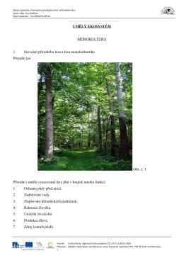 UMĚLÝ EKOSYSTÉM MONOKULTURA 1. Srovnání přírodního lesa