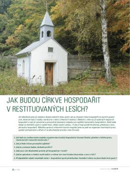 Jak budou církve hospodařit v restituovaných lesích