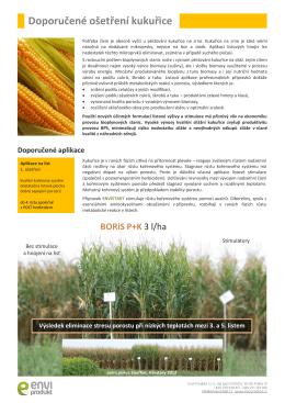 Doporučené ošetření kukuřice a referenční