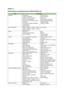 Příloha č. 5 Přehled kulturní a společenské činnosti v MAS Havlíčkův